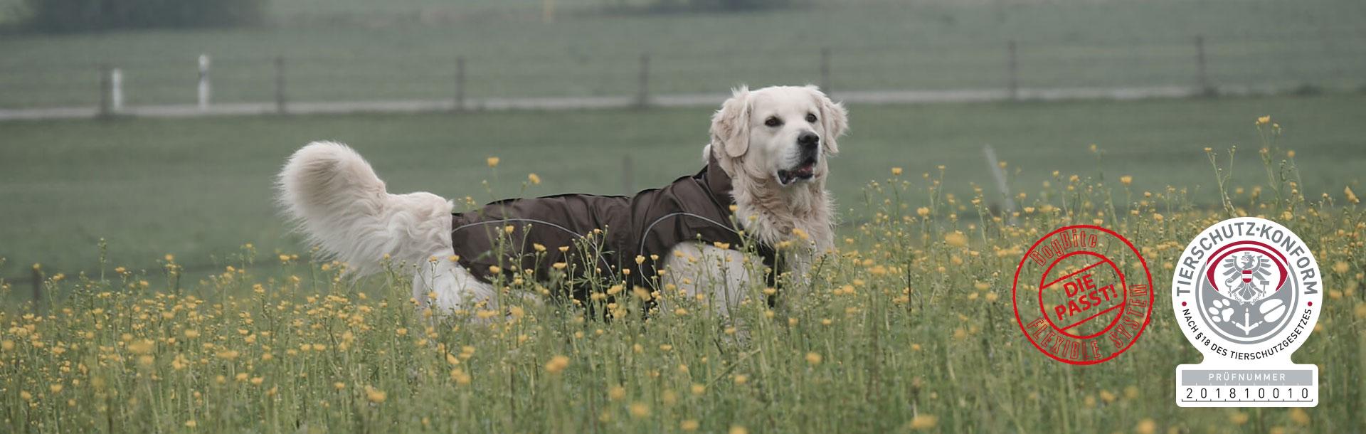 DogBite Hundejacken, Bild 2