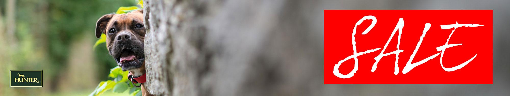 Hunter Hundezubehör SALE