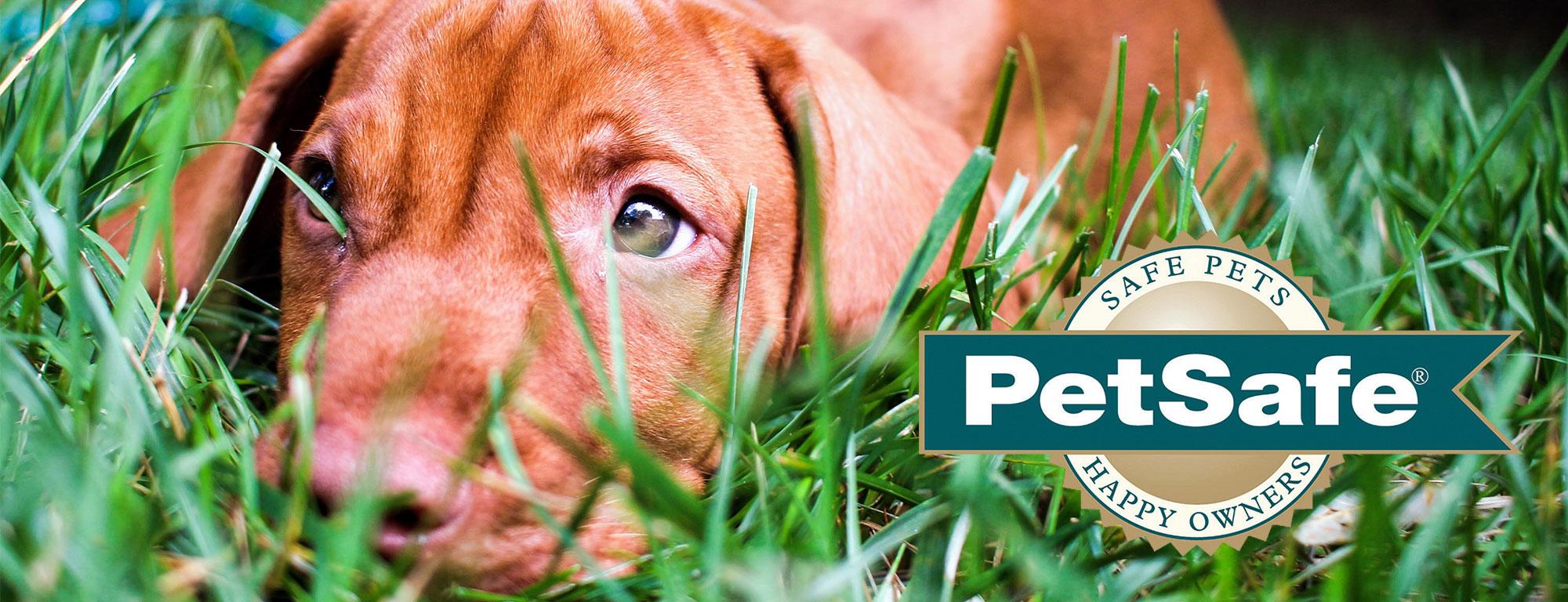 Petsafe Online Shop