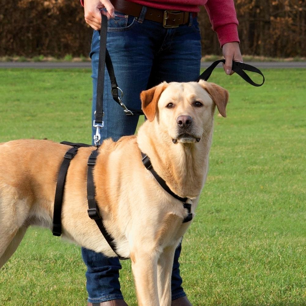Trixie Ausbruchsicheres Hundegeschirr Stay von 13091
