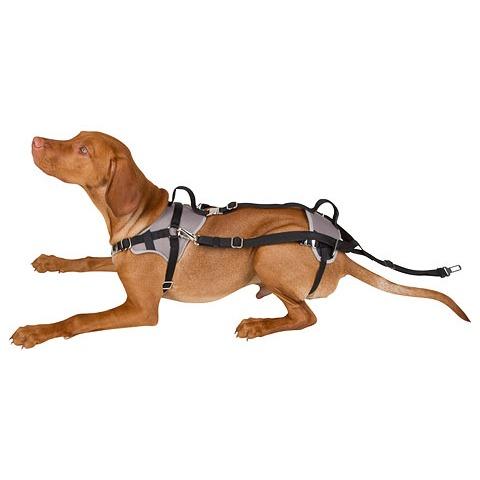 Autosicherheitsgeschirr Travel Protect, Bild 3