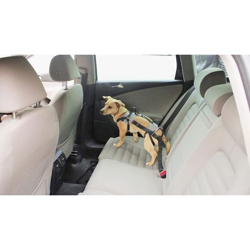 Kerbl Autosicherheitsgeschirr Travel Protect, Bild 2