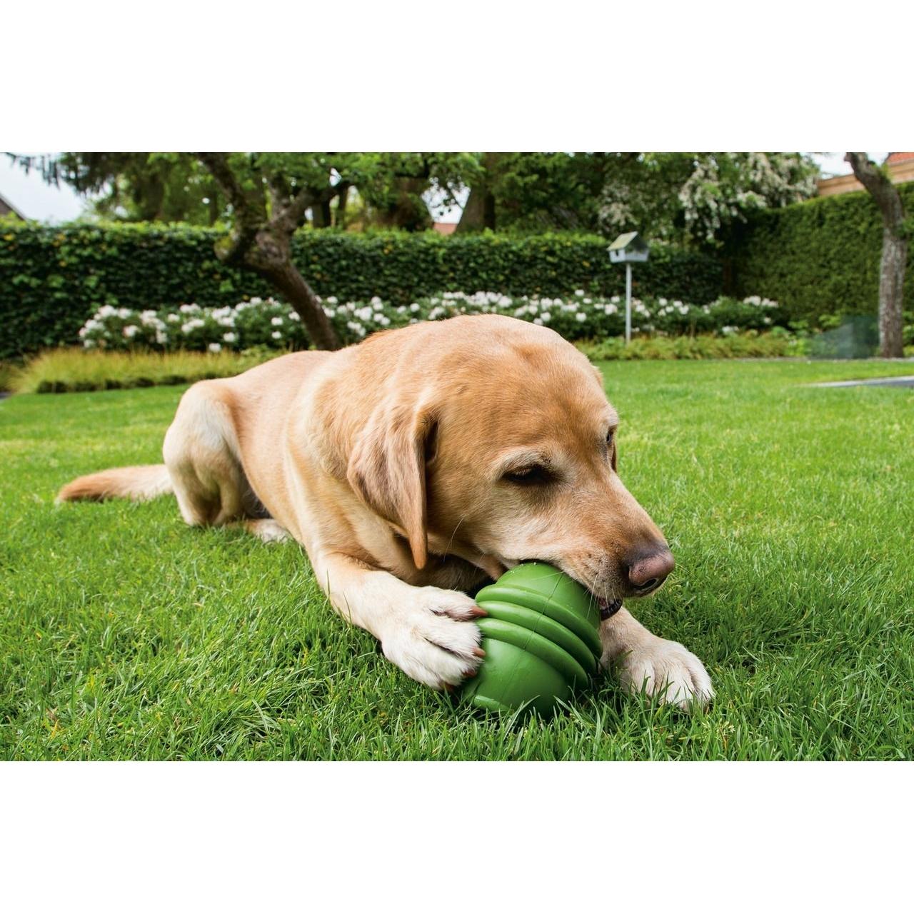 Beeztees BEEZTEES Sumo Play Hundespielzeug, Bild 2
