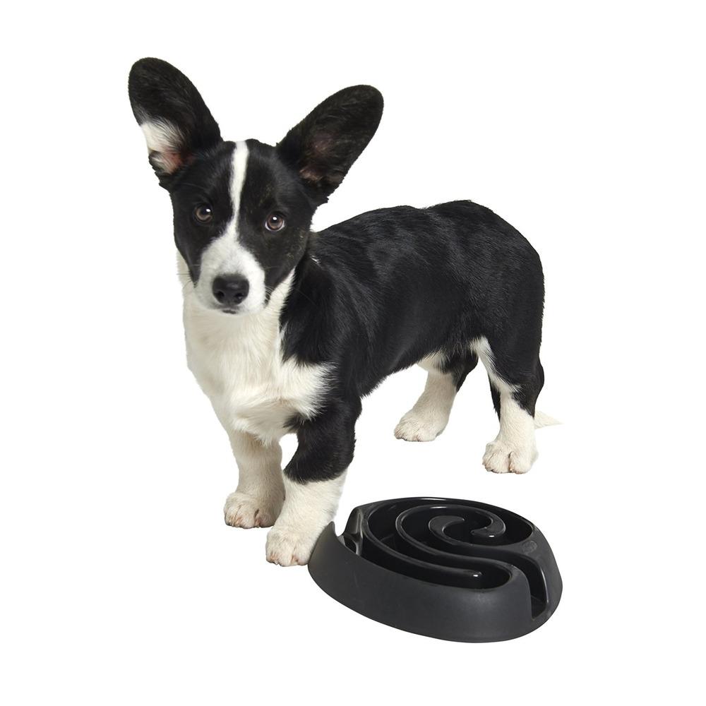Buster Dog Maze Mini, Bild 8