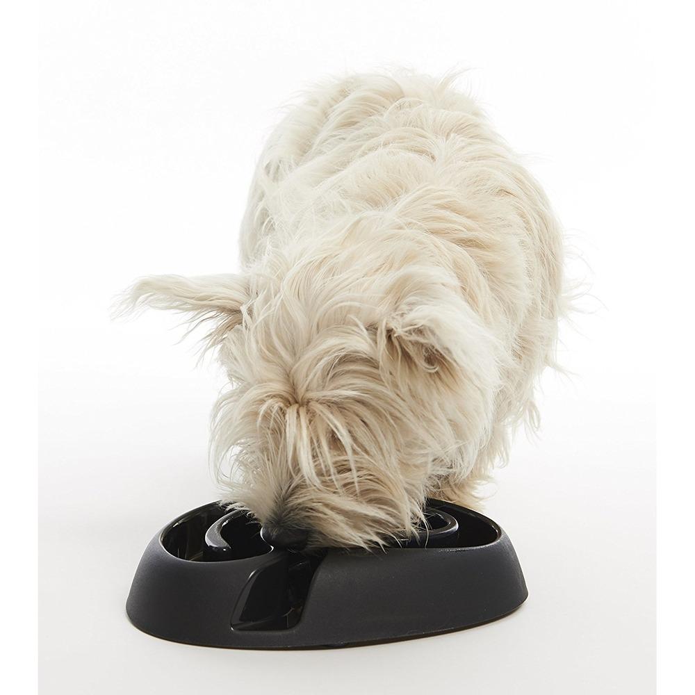 Buster Dog Maze Mini, Bild 11