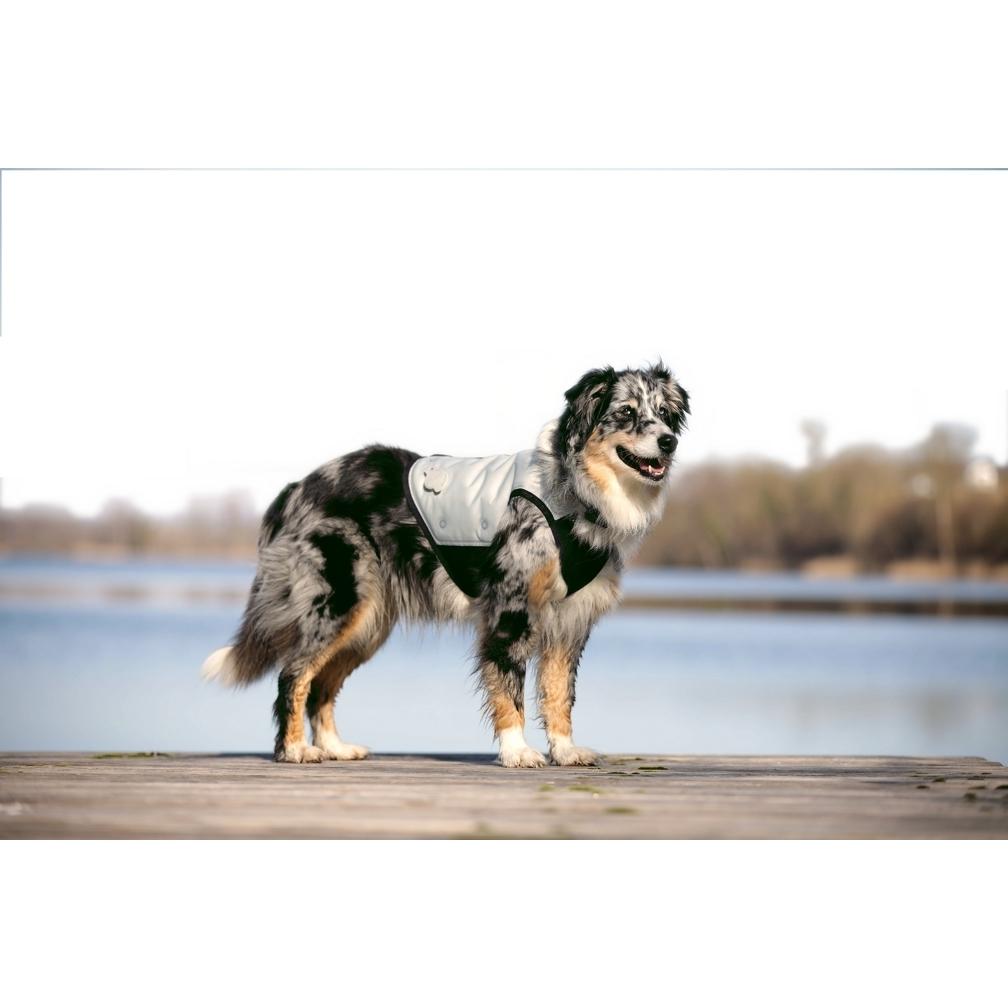 Cani.Cool Kühlweste für Hunde, Bild 3