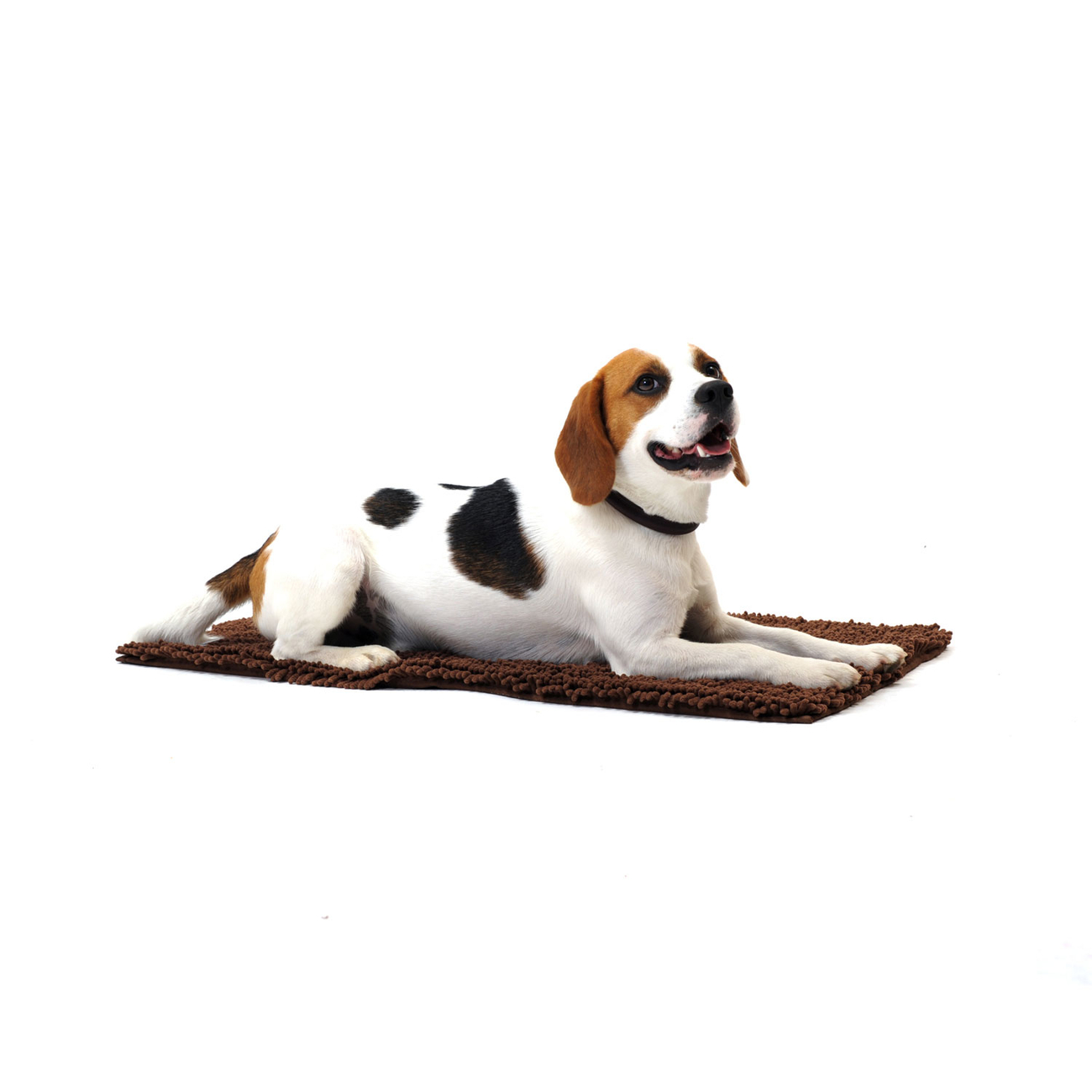 Dog Gone Smart Dirty Dog Doormat Hundematte, Bild 6