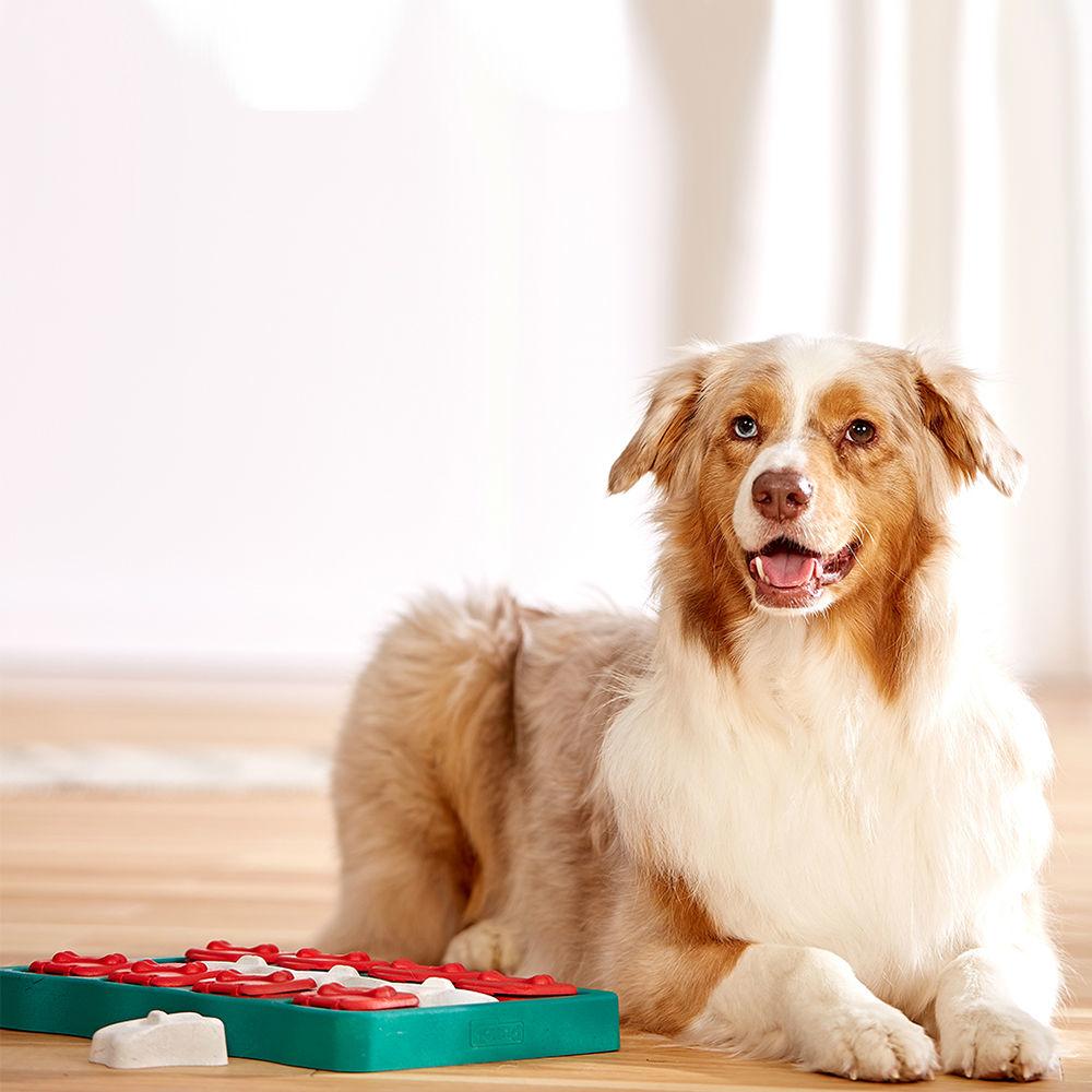 Nina Ottosson Dog Brick Plastik, Bild 2