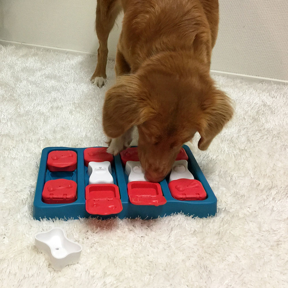 Nina Ottosson Dog Brick Plastik, Bild 5