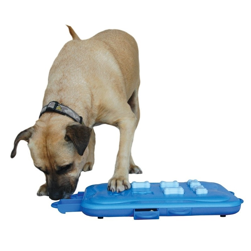 Nina Ottosson Dog Casino Hundespielzeug Plastik, Bild 7