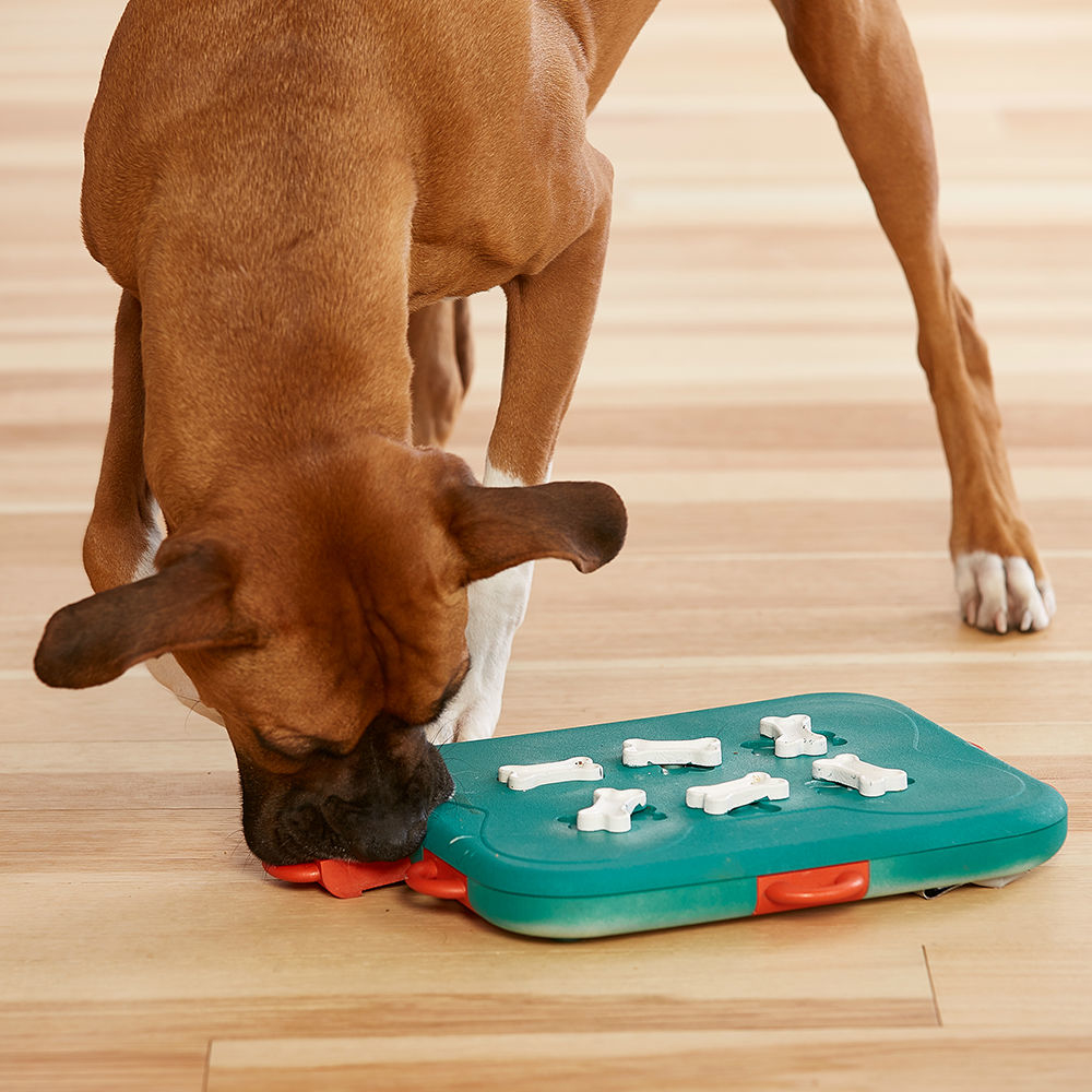 Nina Ottosson Dog Casino Hundespielzeug Plastik, Bild 2