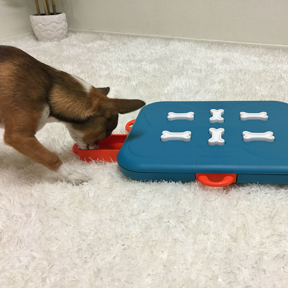 Nina Ottosson Dog Casino Hundespielzeug Plastik, Bild 6
