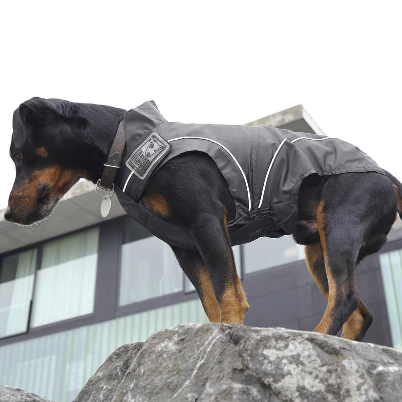 DogBite Hunde Regenjacke, Bild 15