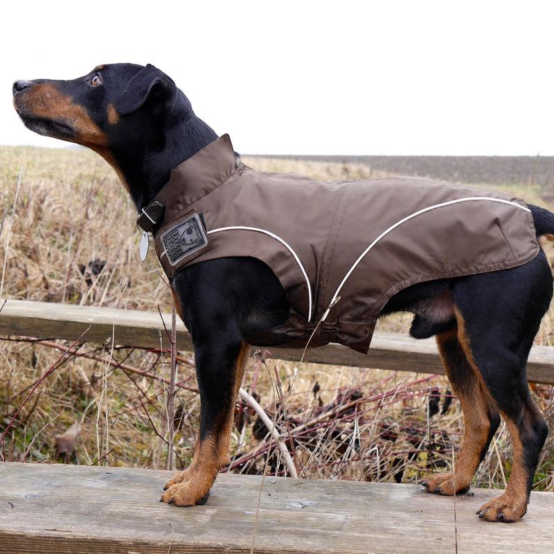 DogBite Hunde Regenjacke, Bild 16