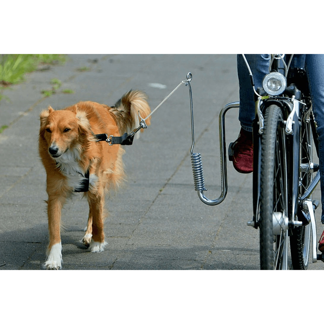 Karlie Flamingo Doggy Guide Fahrradhalter Hund, Bild 2