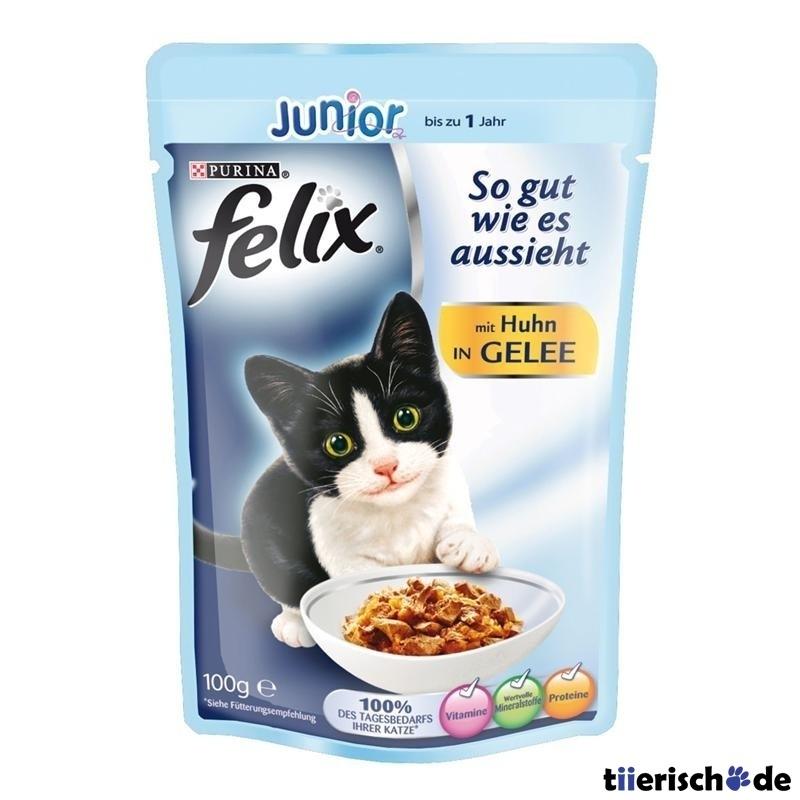 günstiges gutes katzenfutter