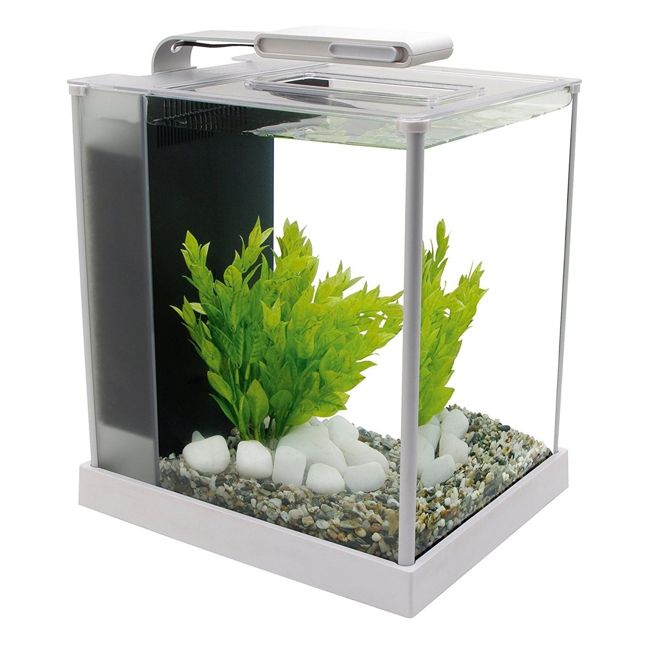 fluval spec s wasser aquarium set von fluval g nstig bestellen. Black Bedroom Furniture Sets. Home Design Ideas