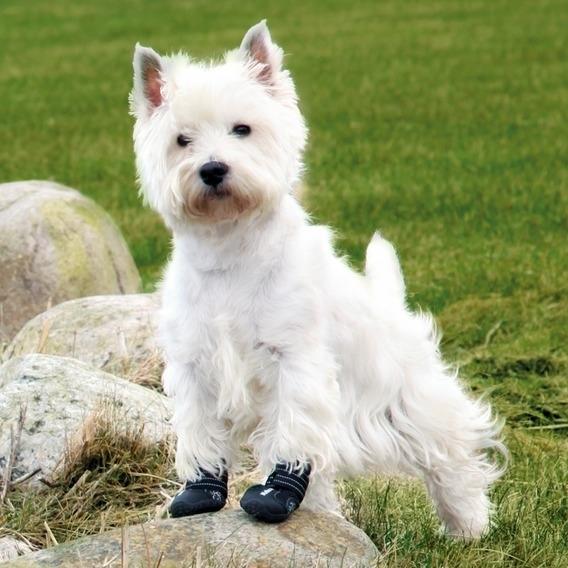 Hundeschuhe Pfotenschutz Walker Active, Bild 4