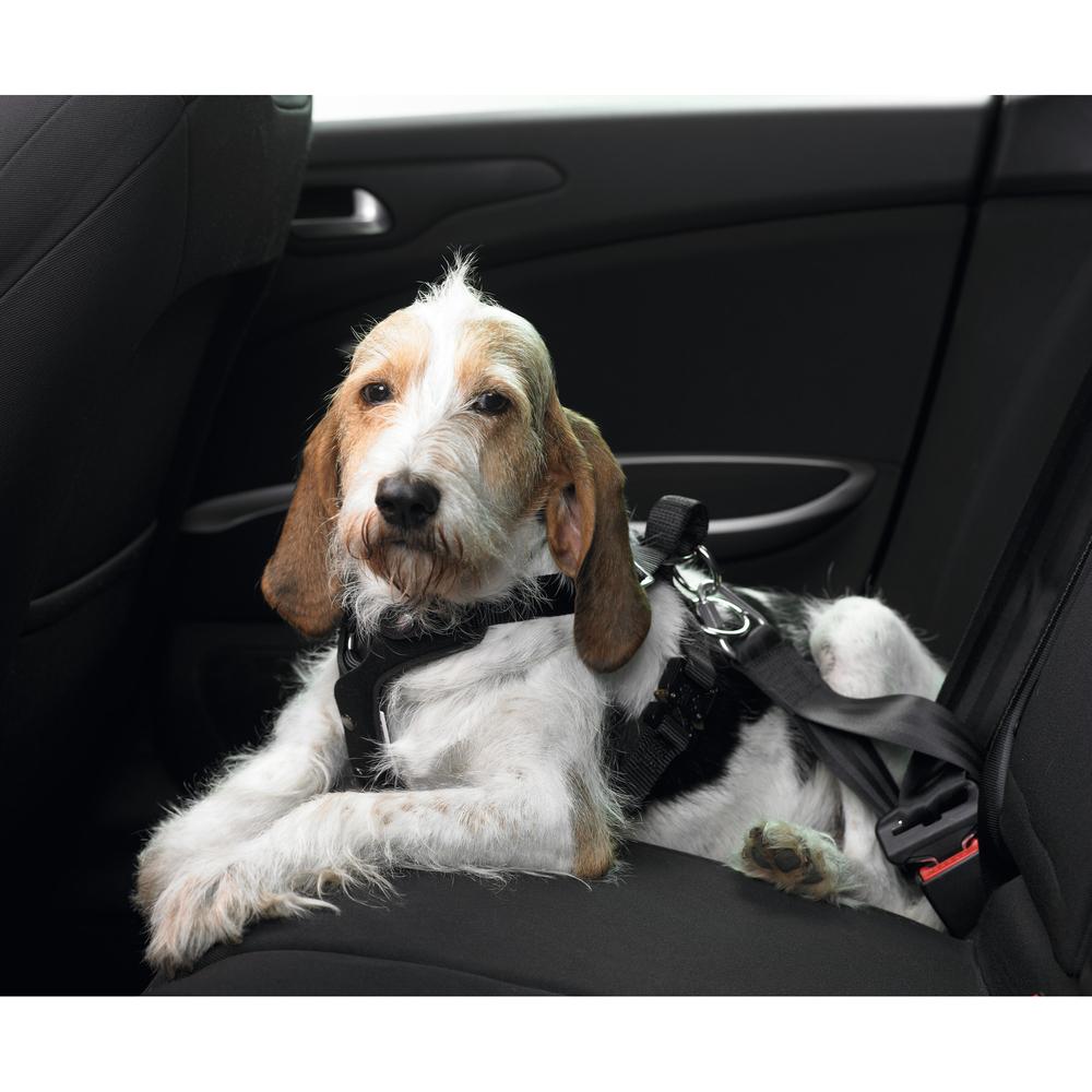 Hunter Autosicherheitsgeschirr Easy Comfort, Bild 2