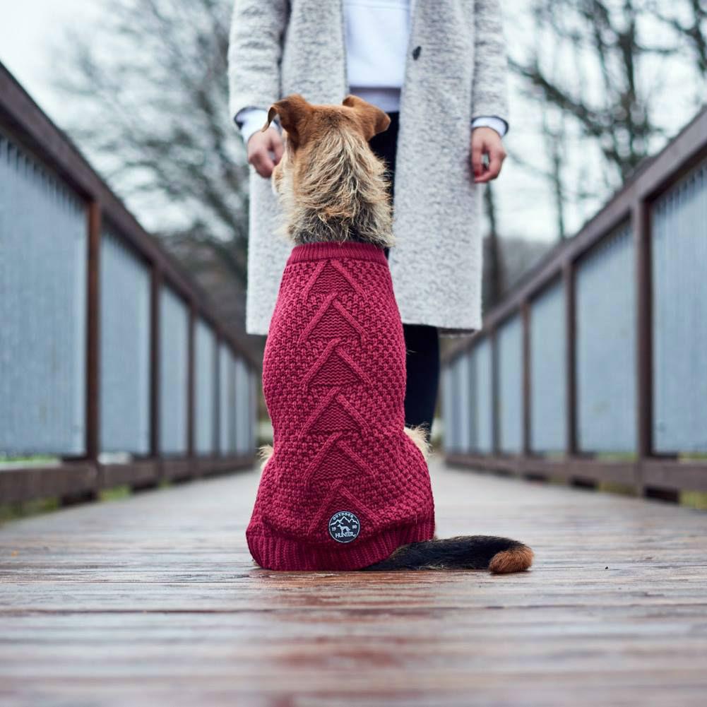 Hunter Hundepullover Malmö 62876, Bild 4