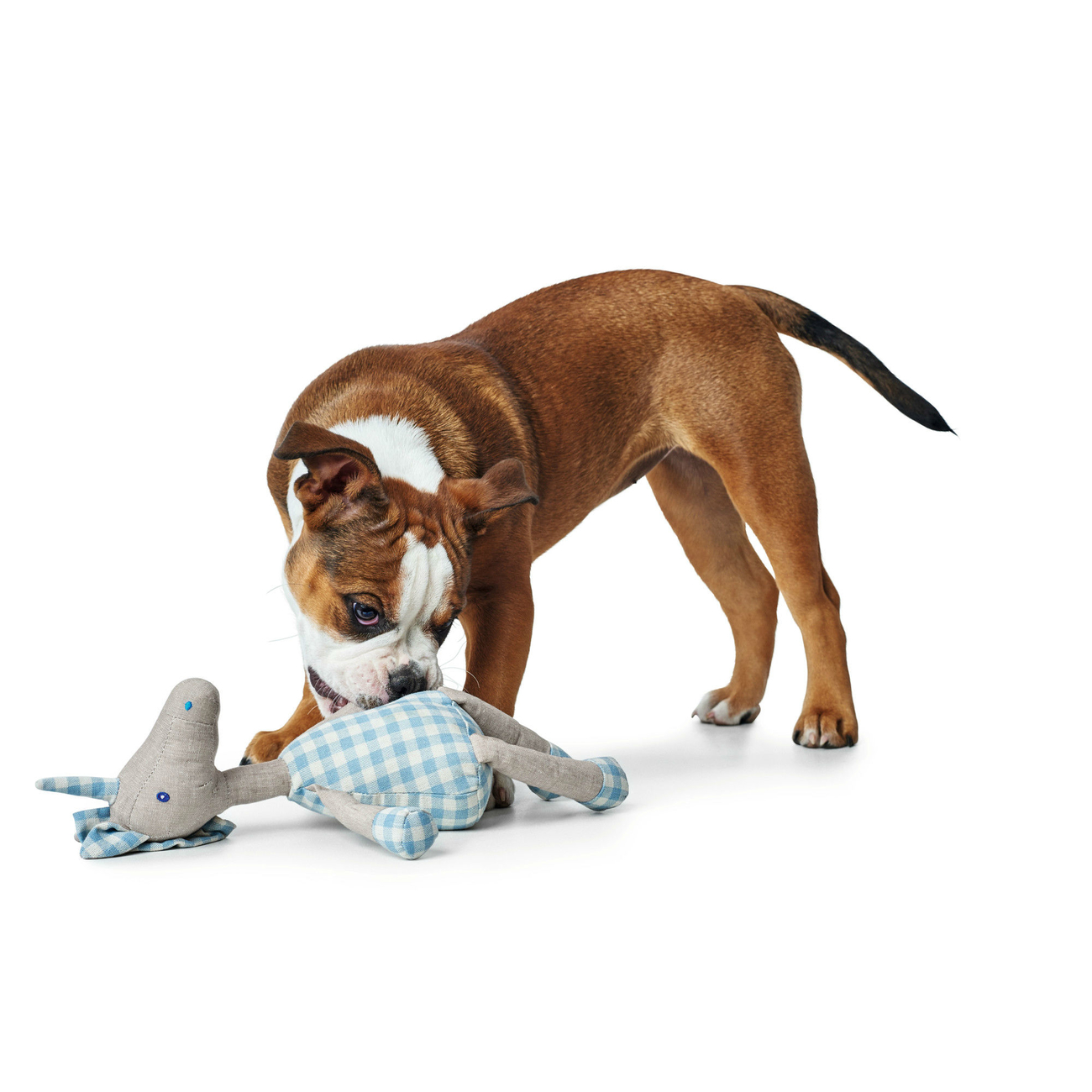 Hunter Hundespielzeug Tanami 65277, Bild 7