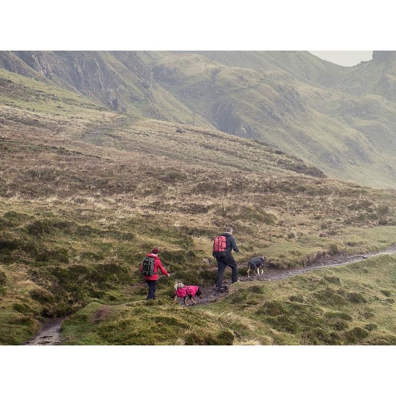 HURTTA Torrent Regenmantel für Hunde, Bild 7