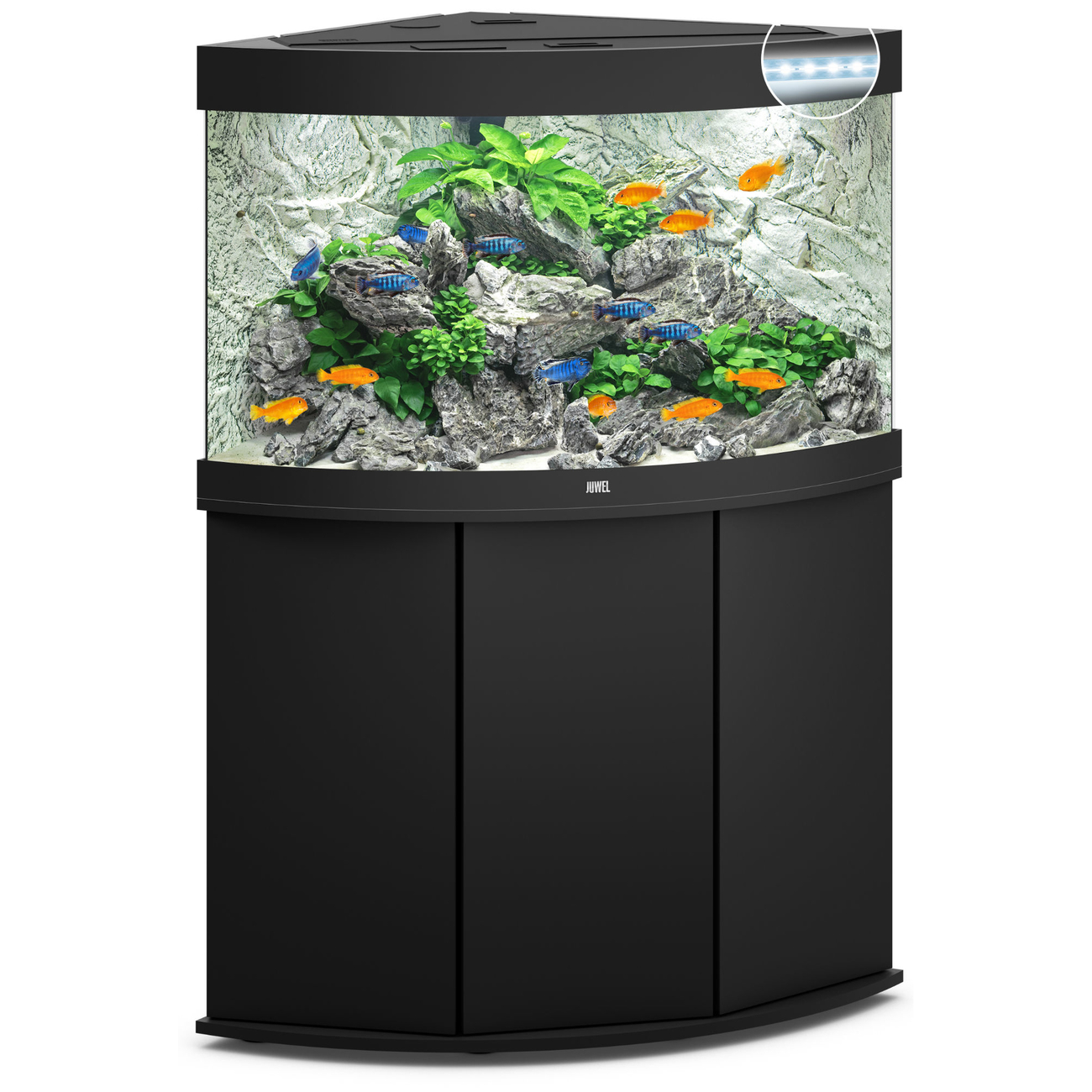juwel trigon 190 led eck aquarium mit unterschrank von juwel g nstig bestellen. Black Bedroom Furniture Sets. Home Design Ideas