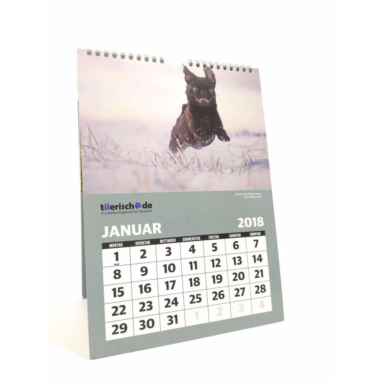 tiierisch.de Kalenderstars 2018 - der tiierische Jahreskalender, Bild 2