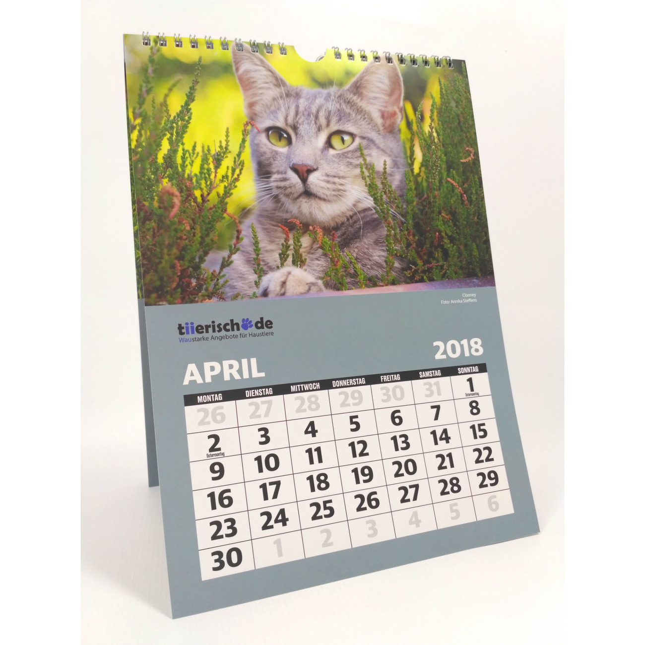 tiierisch.de Kalenderstars 2018 - der tiierische Jahreskalender, Bild 3