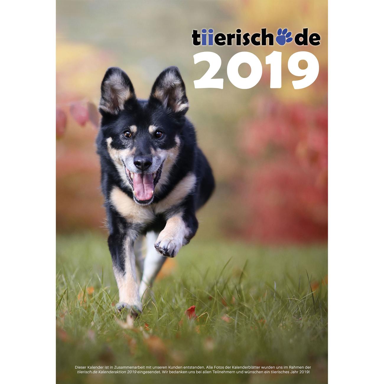 tiierisch.de Kalenderstars 2019 - der tiierische Jahreskalender