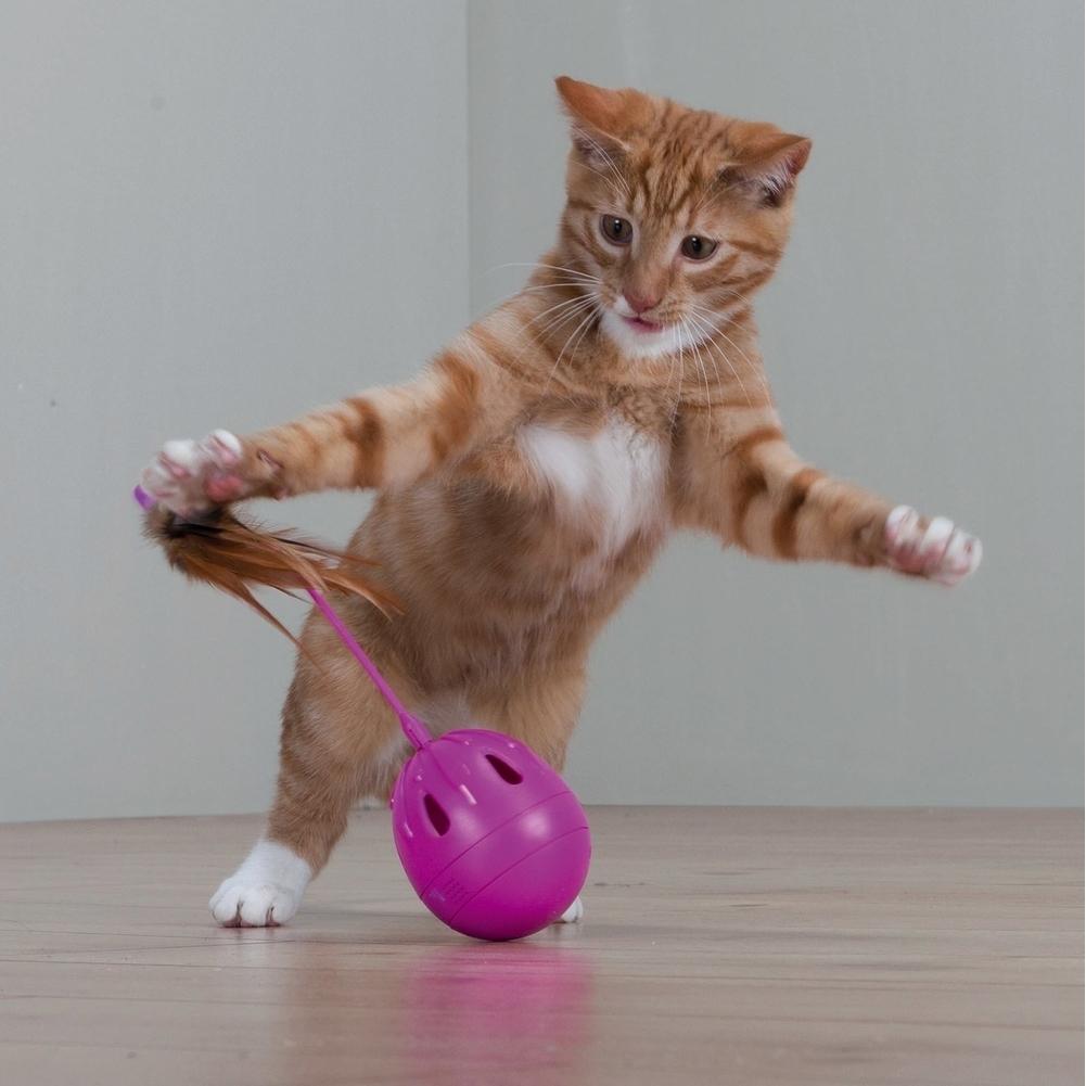 Trixie Katzenspielzeug Steh-Auf-Ei mit Federn und Sound 46016, Bild 2