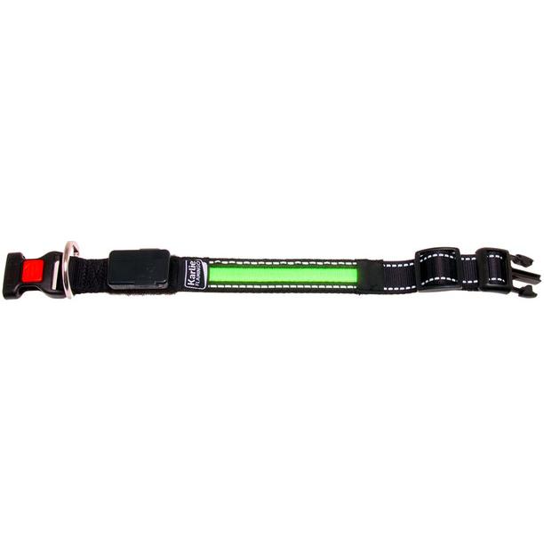 LED Hundehalsband mit USB Ladekabel, Bild 4