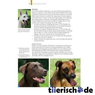 KOSMOS Verlag Sprachkurs Hund von Martin Rütter, Bild 2