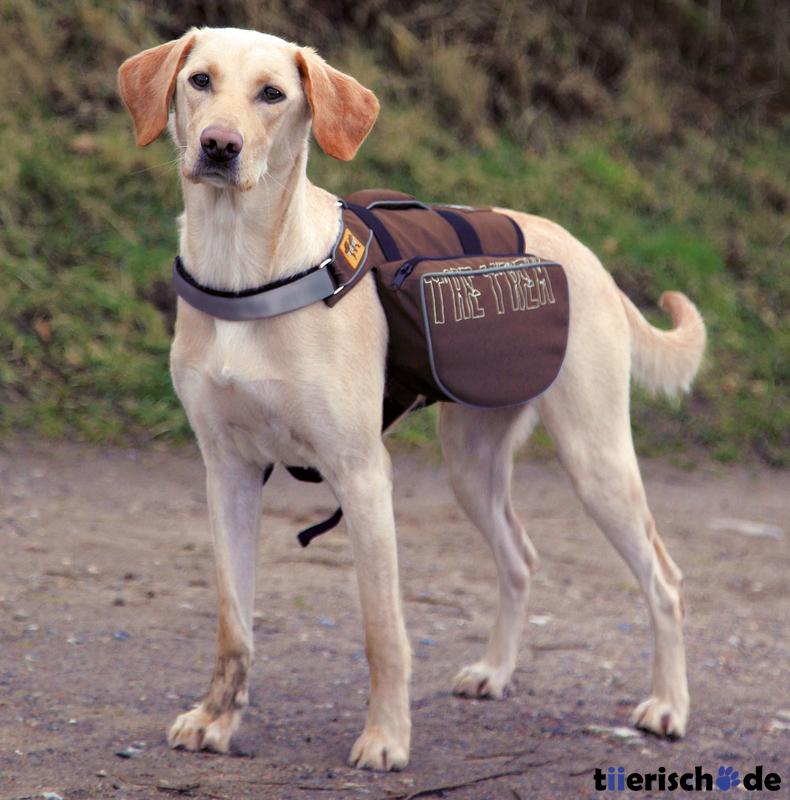 anself pet pack hund satteltasche rucksack mittlerer und. Black Bedroom Furniture Sets. Home Design Ideas