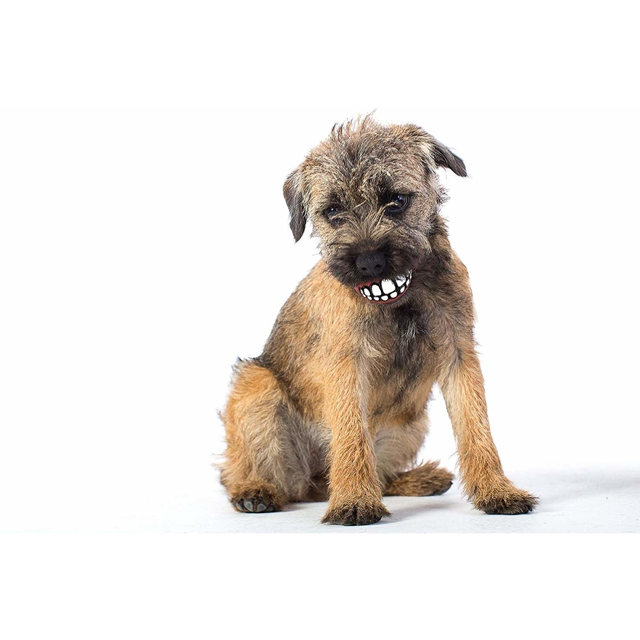 Rogz ROGZ Grinz Ball für Hunde, Bild 9