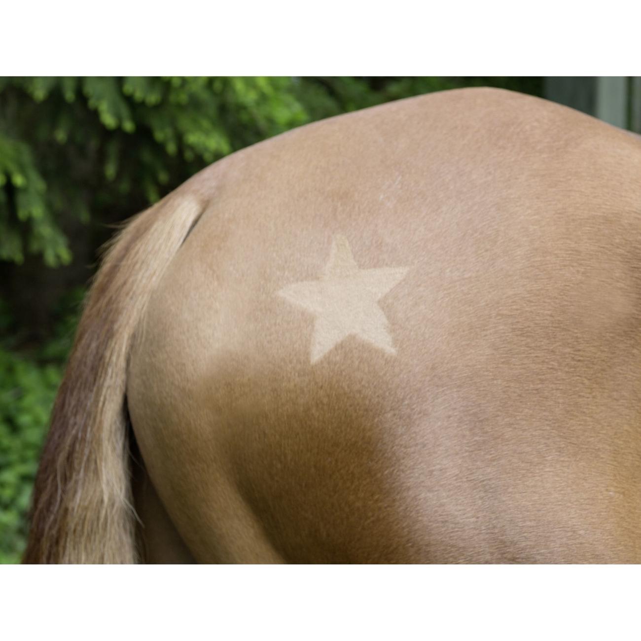 Kerbl Scherschablone für Pferde, 3-er Set, Bild 2