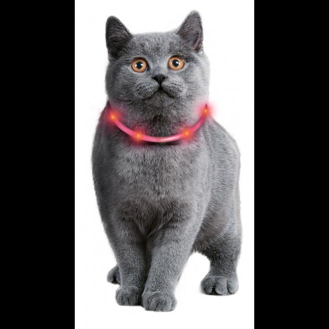 Visio Light Leuchthalsband für Katzen und kleine Hunde, Bild 2