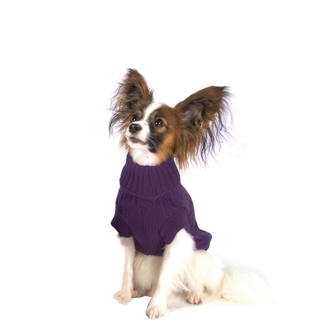 Wolters Zopf-Strickpullover für Hunde, Bild 12