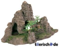 Felsformation mit Höhle und Pflanzen