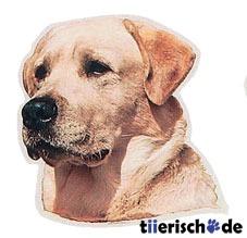 Aufkleber Labrador gelb