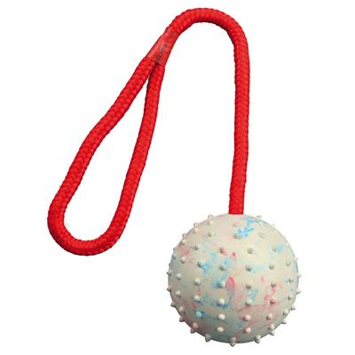 Trixie Spielball für Hunde am Seil mit Noppen