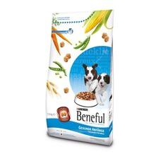 Beneful Gesunde Anfänge Hundefutter