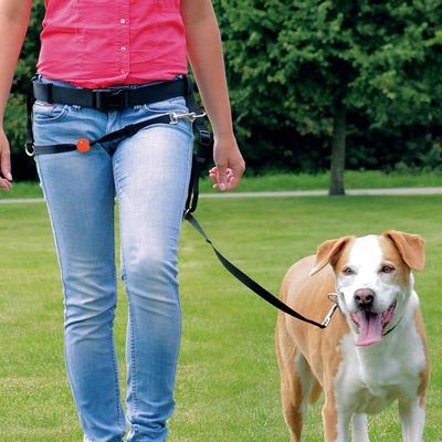 EasyWalk Guide Hundeleine gegen Ziehen
