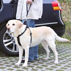 Ersatz-Kurzführer für Auto Hundgeschirr