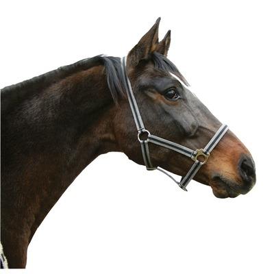 Pferdehalfter HIPPO aus Nylon