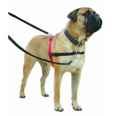 HALTI Harness Ausbildungsgeschirr für Hunde