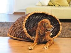 Hunde Muschel Korb aus Weide