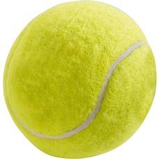 Hunde Tennisball Filz