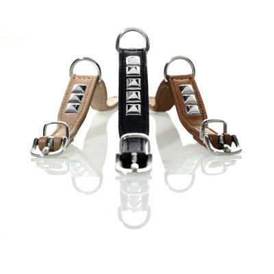 Hunter Hunde Halsband Rocky Elk Petit für kleine Hunde