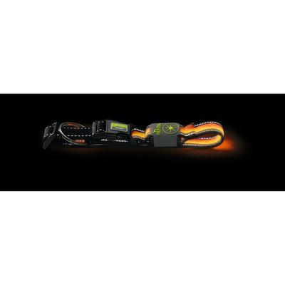 Hunter LED Leuchthalsband Manoa Glow